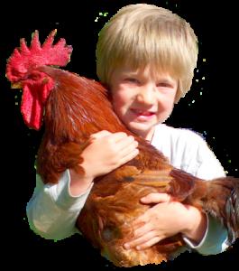 little farm image
